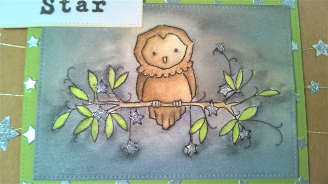 adfd-owl-nephew-4